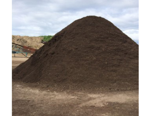 Your Source for Top Quality Garden Soil in Toronto