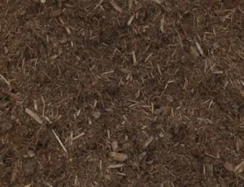 The finest mulch for your garden by our Mississauga landscaping experts