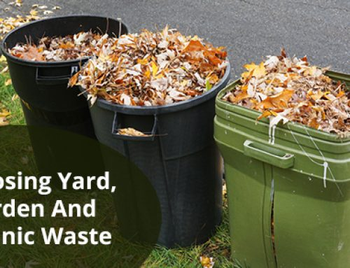 Yard, Garden, And Organic Waste Disposal Tips